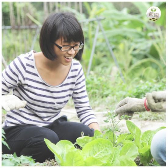 Backyard_farm_D01