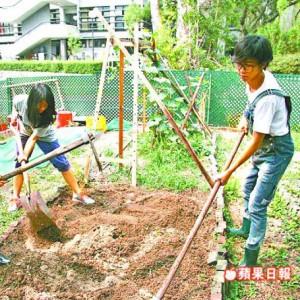 Media_Backyard_Appledaily_20121117C_c