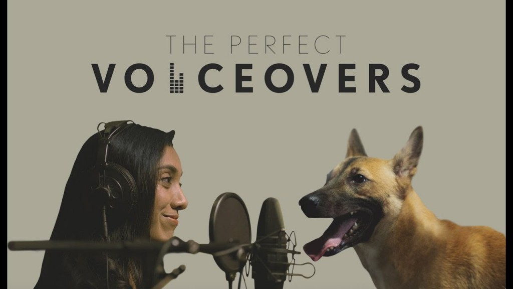 The Perfect Voiceovers