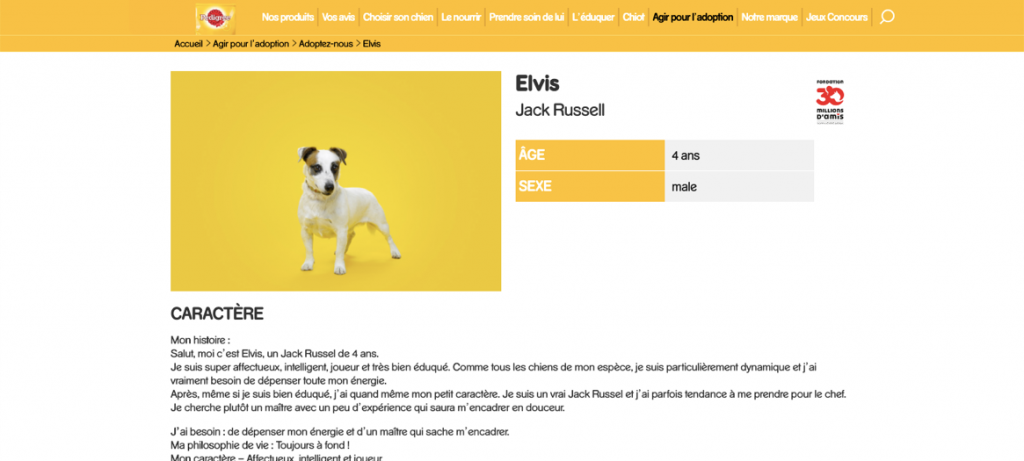 Figure 4: Attached link for more dogs' info